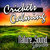 Crickets Calming (Nature Sounds) by Nature Sound Series