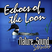 Echoes of the Loon (Nature Sounds) by Nature Sound Series