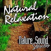 Natural Relaxation (Nature Sounds) by Nature Sound Series