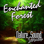 Enchanted Forest (Nature Sounds) by Nature Sound Series