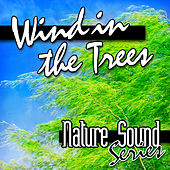 Wind in the Trees (Nature Sounds) by Nature Sound Series