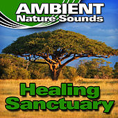 Healing Sanctuary (Nature Sounds) by Ambient Nature Sounds