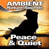 Peace & Quiet (Nature Sounds) by Ambient Nature Sounds