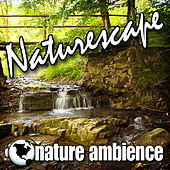 Naturescape (Nature Sounds) by Nature Ambience
