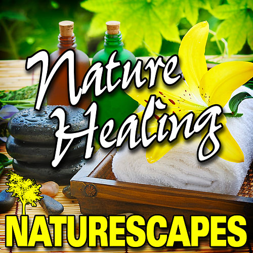 Nature Healing (Nature Sounds) by Naturescape
