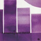Fantastics by Javad Maroufi