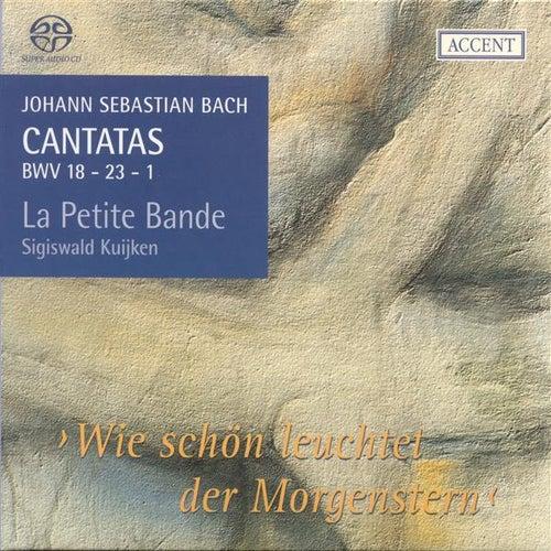 BACH, J.S.: Cantatas, Vol.  6 (Kuijken) - BWV 1, 18, 23 by Jan van der Crabben