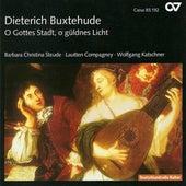 BUXTEHUDE, D.: Vocal Music (Steude) by Wolfgang Katschner