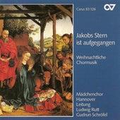 Choral Music - KUBIZEK, A. / HOLST, G. / DISTLER, H. / BRITTEN, B. / BRESGEN, C. / KOERPPEN, A. / REGER, M. (Hanover Girl's Choir, Rutt) by Various Artists