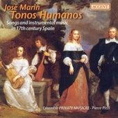 Chamber Music (17th Century Spain) - MARIN, J. / RUIZ DE RIBAYAZ / GUERAU, F. / HIDALGO, J. / SANZ, G. (Private Musicke, Pitzl) by Pierre Pitzl