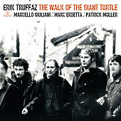 The Walk Of The Giant Turtle by Erik Truffaz