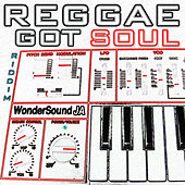 Reggae Got Soul Riddim by Various Artists