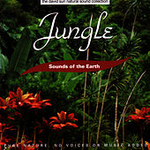 Jungle by Sounds Of The Earth
