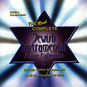 Real Complete Jewish Instrumental Music... by David & The High Spirit