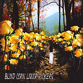 Appalachian Trail by Blind Corn Liquor Pickers