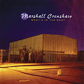 What's In The Bag by Marshall Crenshaw