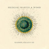 Radiolarians III by Medeski, Martin and Wood