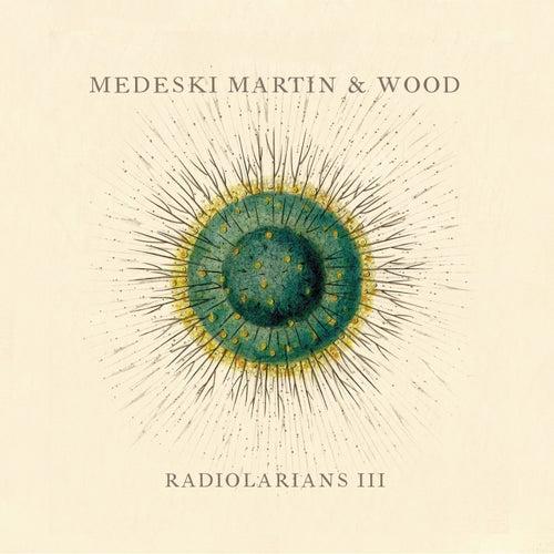 Radiolarians III by Medeski, Martin and Wood