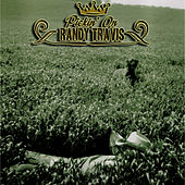 Pickin' On Randy Travis by Pickin' On