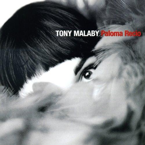 Tony Malaby: Paloma Recio by Tony Malaby