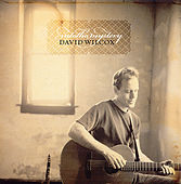 Into the Mystery by David Wilcox
