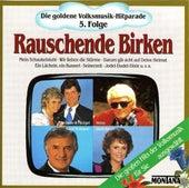 Die goldene Volksmusik-Hitparade 5. Folge Rauschende Birken by Various Artists