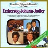 Die goldene Volksmusik-Hitparade 14. Folge Erzherzog-Johann-Jodler by Various Artists