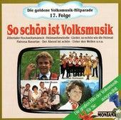 Die goldene Volksmusik-Hitparade 17. Folge So schön ist Volksmusik by Various Artists