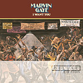 I Want You by Marvin Gaye