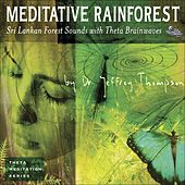 Meditative Rainforest by Dr. Jeffrey Thompson