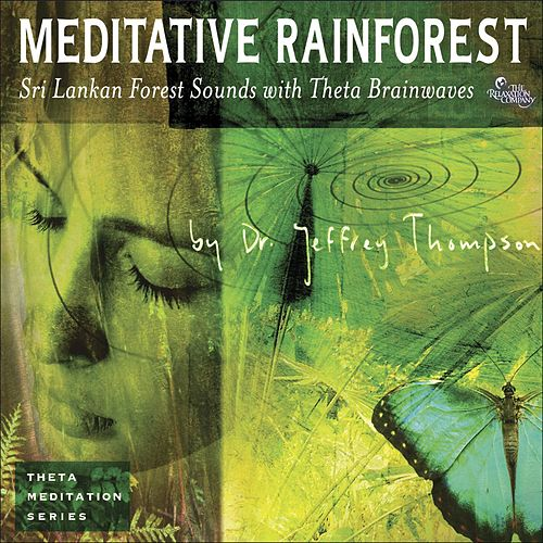 Meditative Rainforest by Dr. Jeffrey Thompson