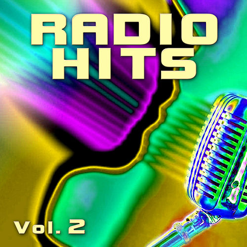 Radio Hits Vol. 2 by The Hit Nation