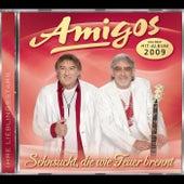 Sehnsucht, die wie Feuer brennt by Los Amigos