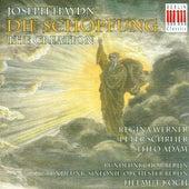 HAYDN, F.J.: Schopfung (Die) (The Creation) [Oratorio] (Koch) von Peter Schreier