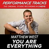 You Are Everything (Premiere Performance Plus Track) by Matthew West