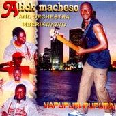 Vapupuri Pupurai by Alick Macheso and Orchestra Mberikwazvo
