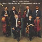 Tchaikovsky - Strauss - Wolf by Uppsala Chamber Soloists