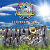Como Un Sol by Banda La Pirinola