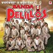Volver A Verte by Banda Pelillos