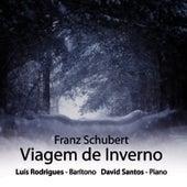 Viagem De Inverno - Winterreise (Franz Schubert) by Franz Schubert