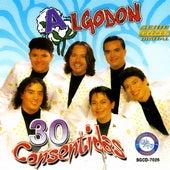 30 Consentidas by Algodon