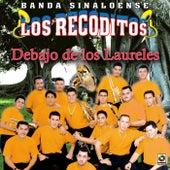 Debajo De Los Laureles by Banda Los Recoditos