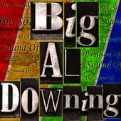 The Sound Of Big Al Downing by Big Al Downing