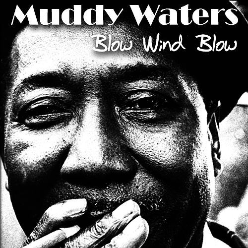 Blow Wind Blow by Muddy Waters