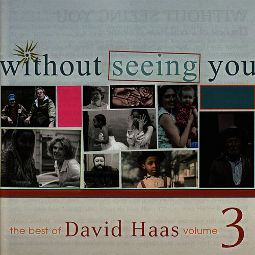Without Seeing You: The Best of David Haas, Vol. 3 by David Haas