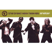 Shelter by Brand New Heavies