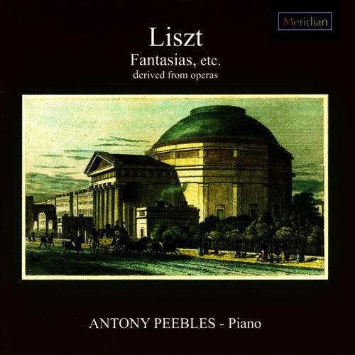 Liszt: Fantasias, et al. by Antony Peebles