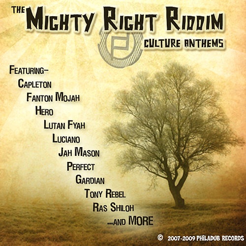 The Mighty Right Riddim by Various Artists