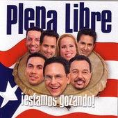 Estamos Gozando by Plena Libre