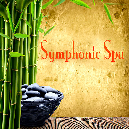 Symphonic Spa by Various Artists